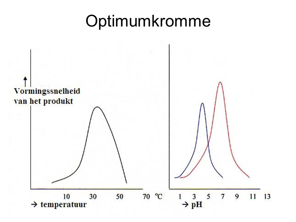 Optimumkromme