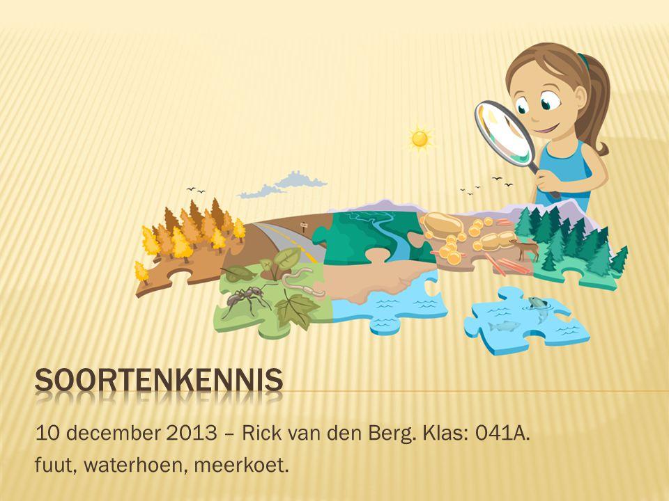 Soortenkennis 10 december 2013 – Rick van den Berg. Klas: 041A.