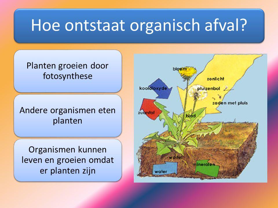 Hoe ontstaat organisch afval