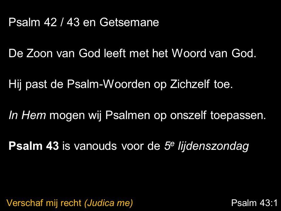 Verschaf mij recht (Judica me) Psalm 43:1