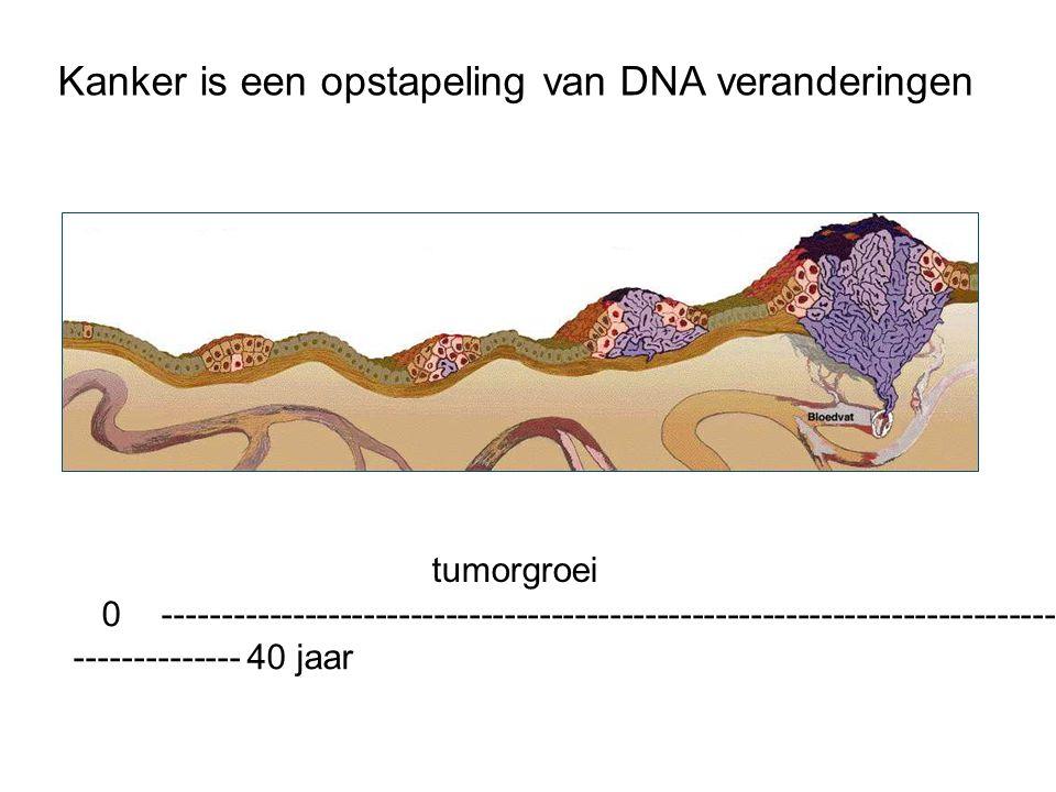 Kanker is een opstapeling van DNA veranderingen
