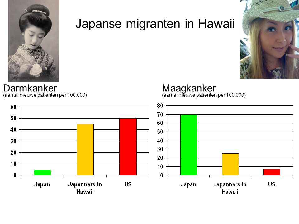 Japanse migranten in Hawaii