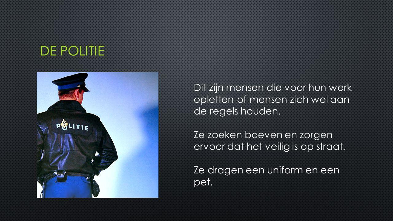 De politie Dit zijn mensen die voor hun werk opletten of mensen zich wel aan de regels houden.
