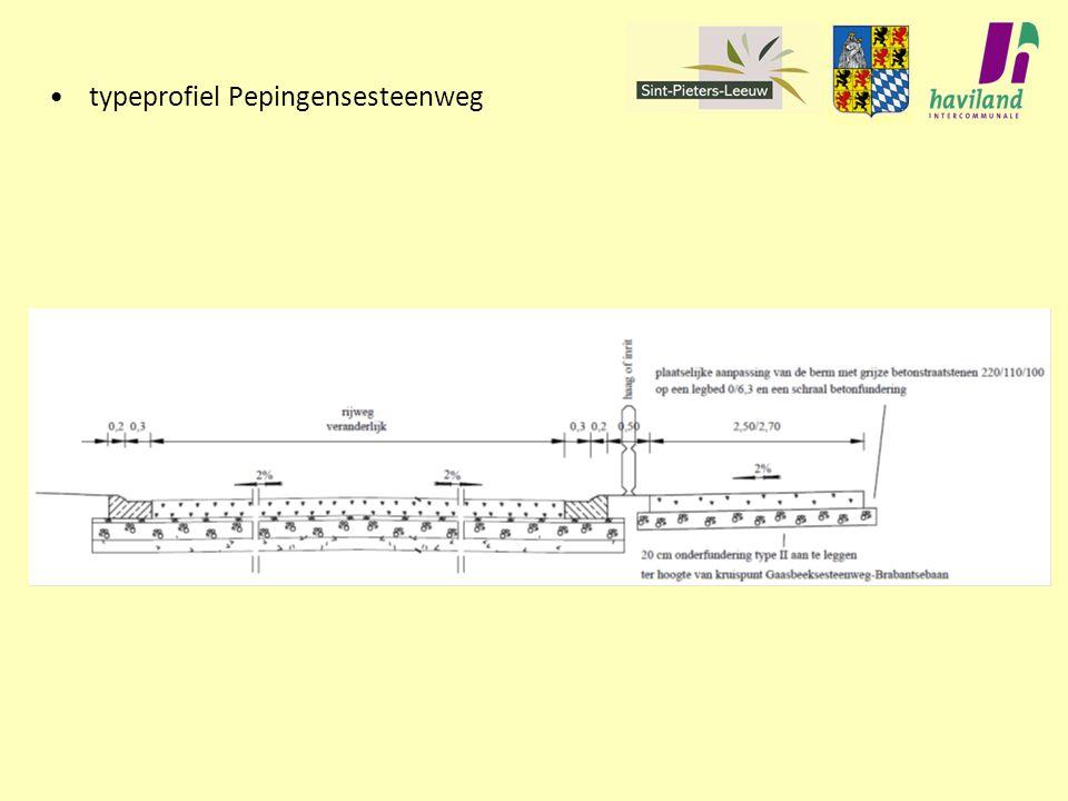 typeprofiel Pepingensesteenweg