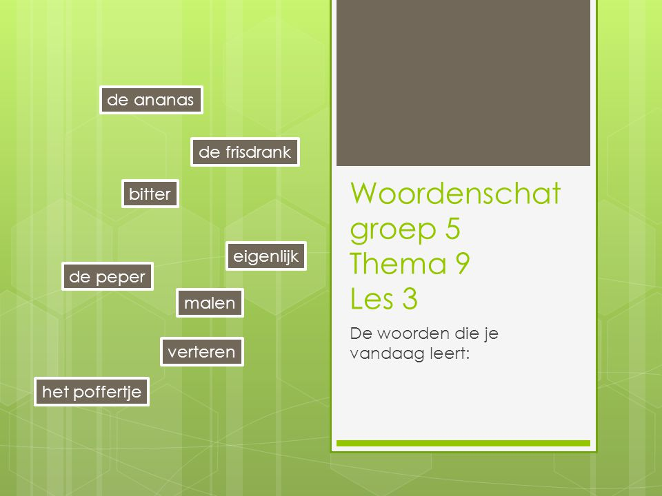 Woordenschat groep 5 Thema 9 Les 3