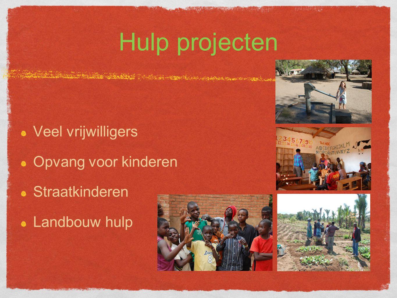 Hulp projecten Veel vrijwilligers Opvang voor kinderen Straatkinderen