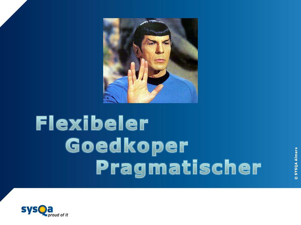 Flexibeler Goedkoper Pragmatischer