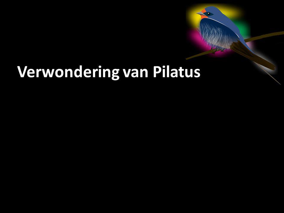 Verwondering van Pilatus