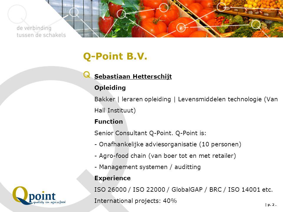 Q-Point B.V.