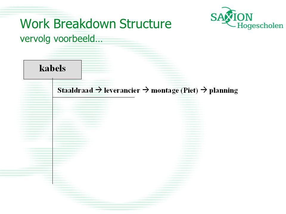 Work Breakdown Structure vervolg voorbeeld…