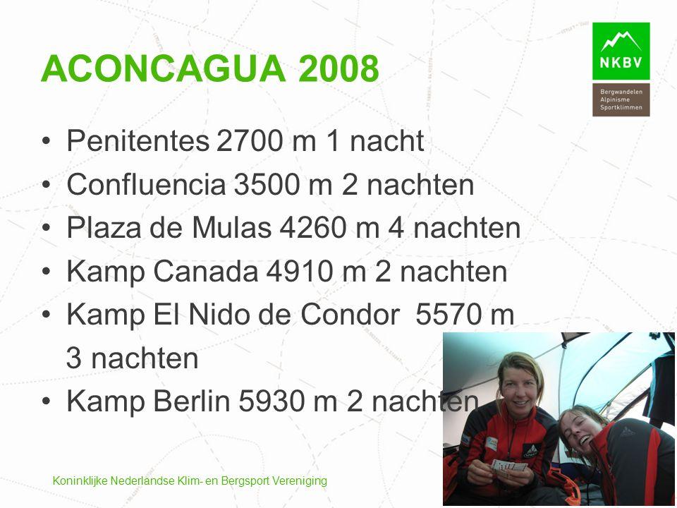 Aconcagua 2008 Penitentes 2700 m 1 nacht Confluencia 3500 m 2 nachten