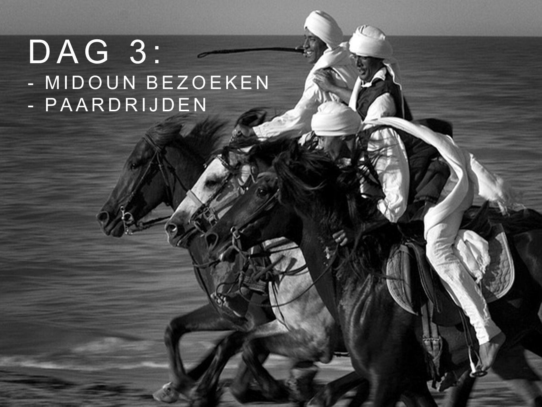 dag 3: - midoun bezoeken - paardrijden