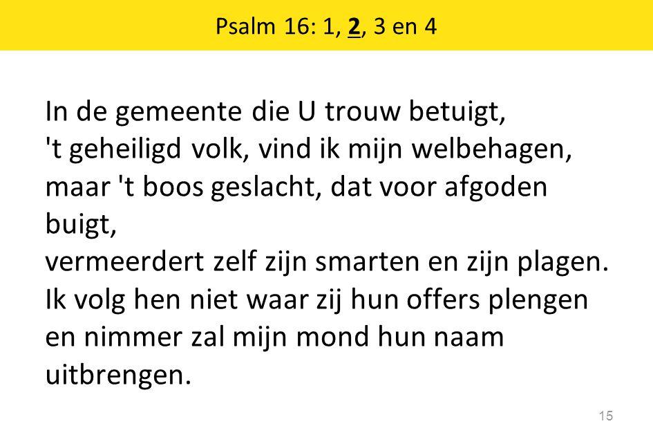 Psalm 16: 1, 2, 3 en 4