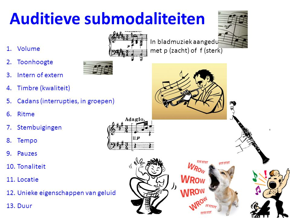 Auditieve submodaliteiten