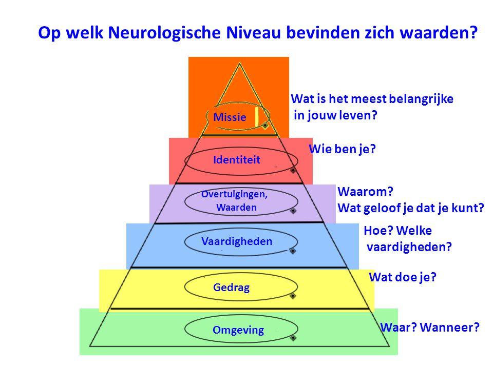 Op welk Neurologische Niveau bevinden zich waarden