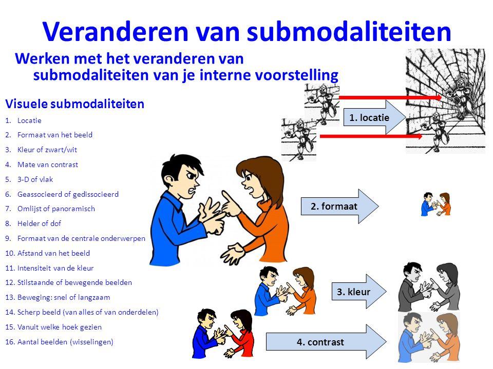 Veranderen van submodaliteiten