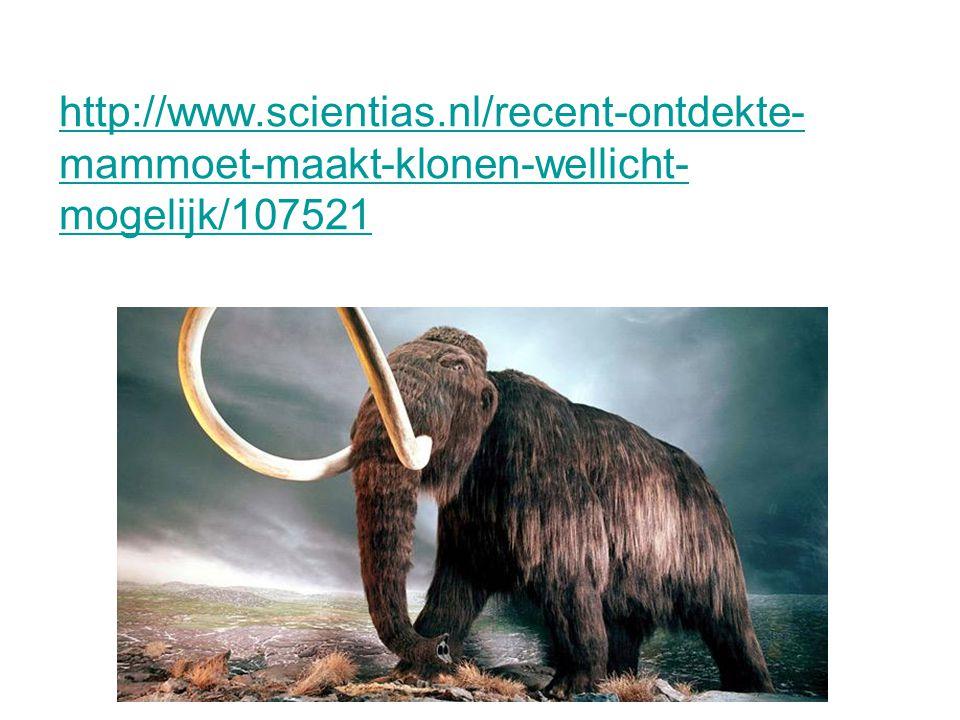 http://www.scientias.nl/recent-ontdekte-mammoet-maakt-klonen-wellicht-mogelijk/107521