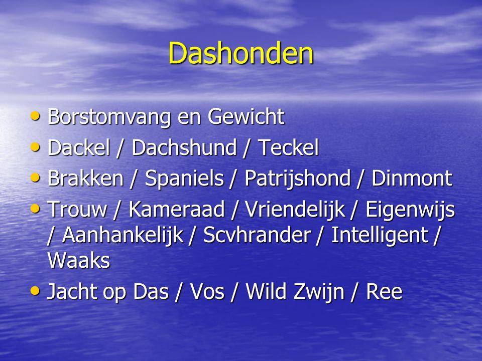 Dashonden Borstomvang en Gewicht Dackel / Dachshund / Teckel