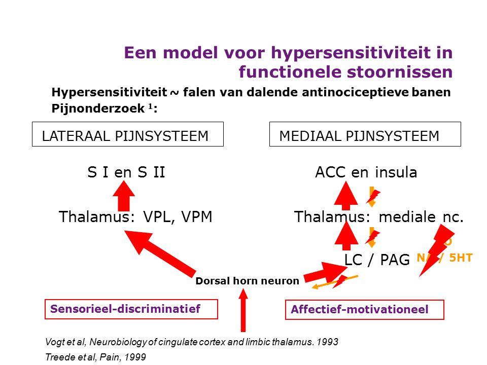 Een model voor hypersensitiviteit in functionele stoornissen