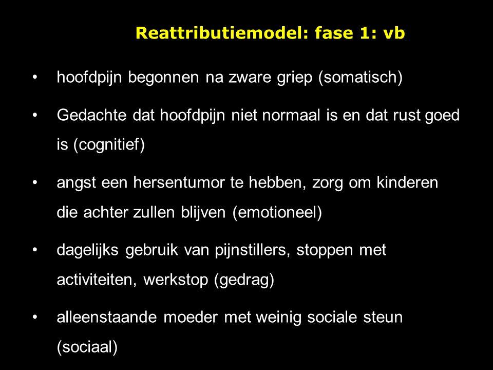 Reattributiemodel: fase 1: vb
