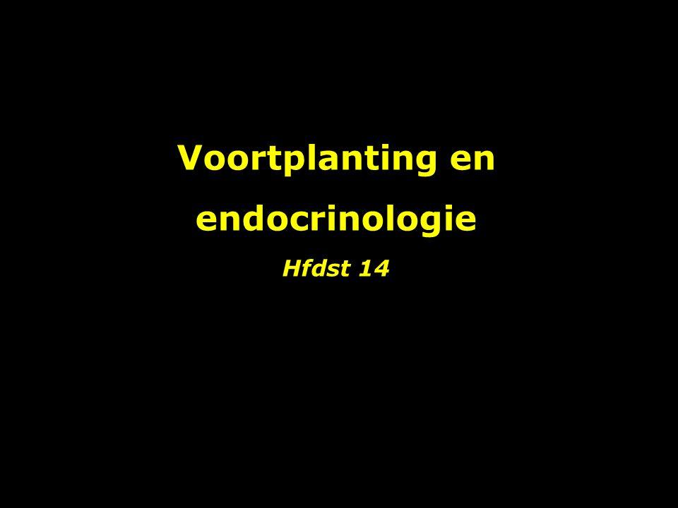 Voortplanting en endocrinologie