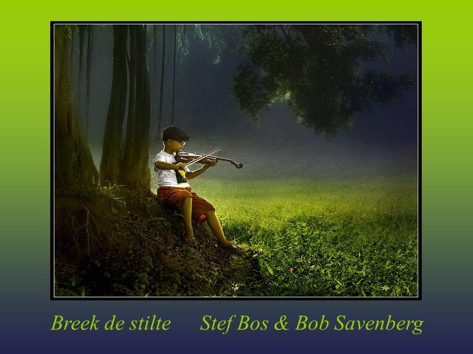 Stef Bos & Bob Savenberg