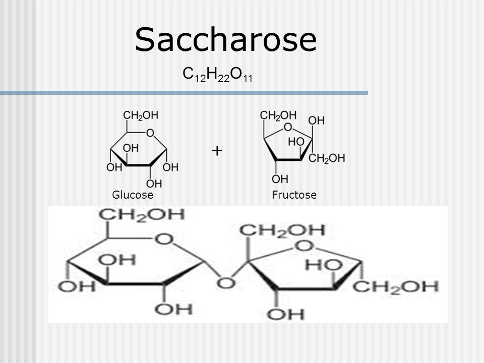 Saccharose C12H22O11 + Glucose Fructose