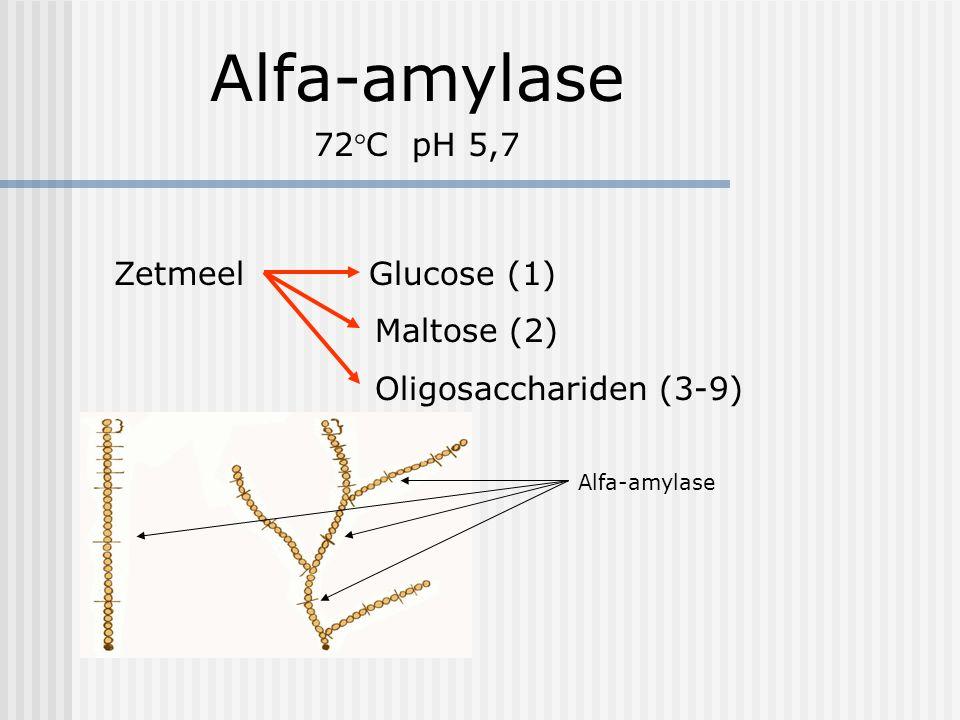 Alfa-amylase 72°C pH 5,7 Zetmeel Glucose (1) Maltose (2)