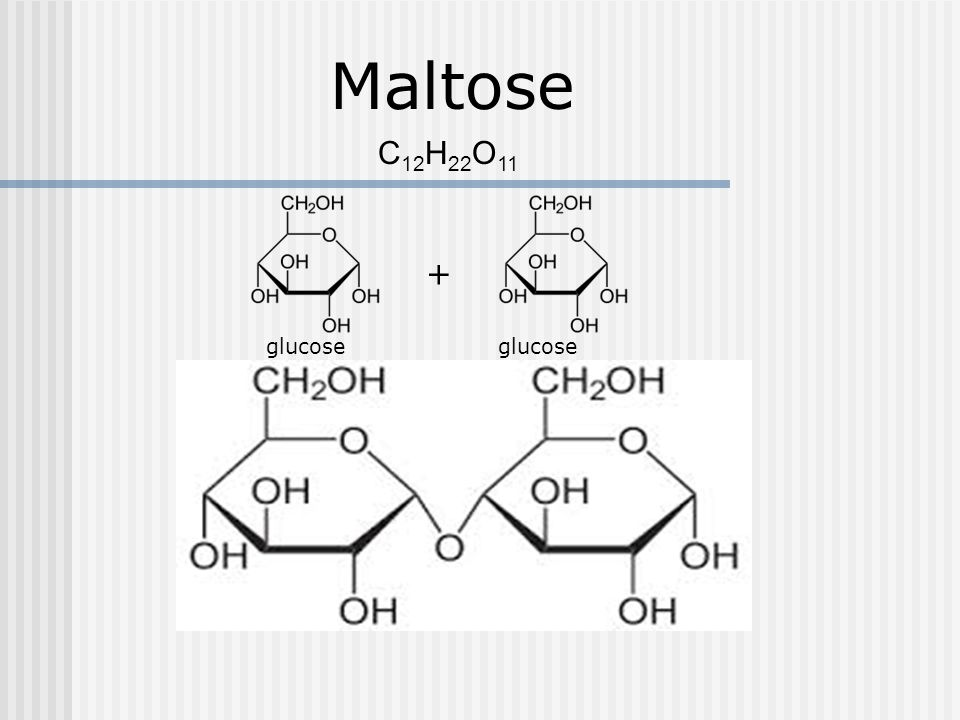 Maltose C12H22O11 + glucose glucose
