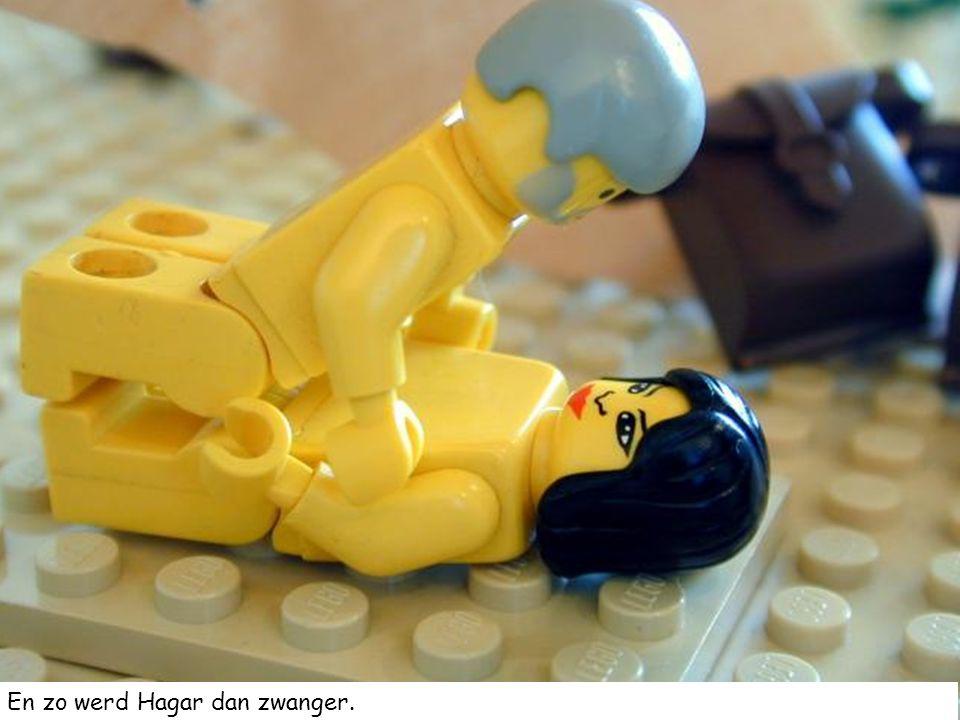 En zo werd Hagar dan zwanger.