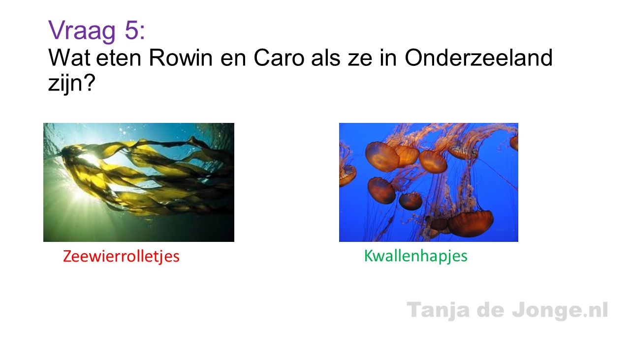 Vraag 5: Wat eten Rowin en Caro als ze in Onderzeeland zijn