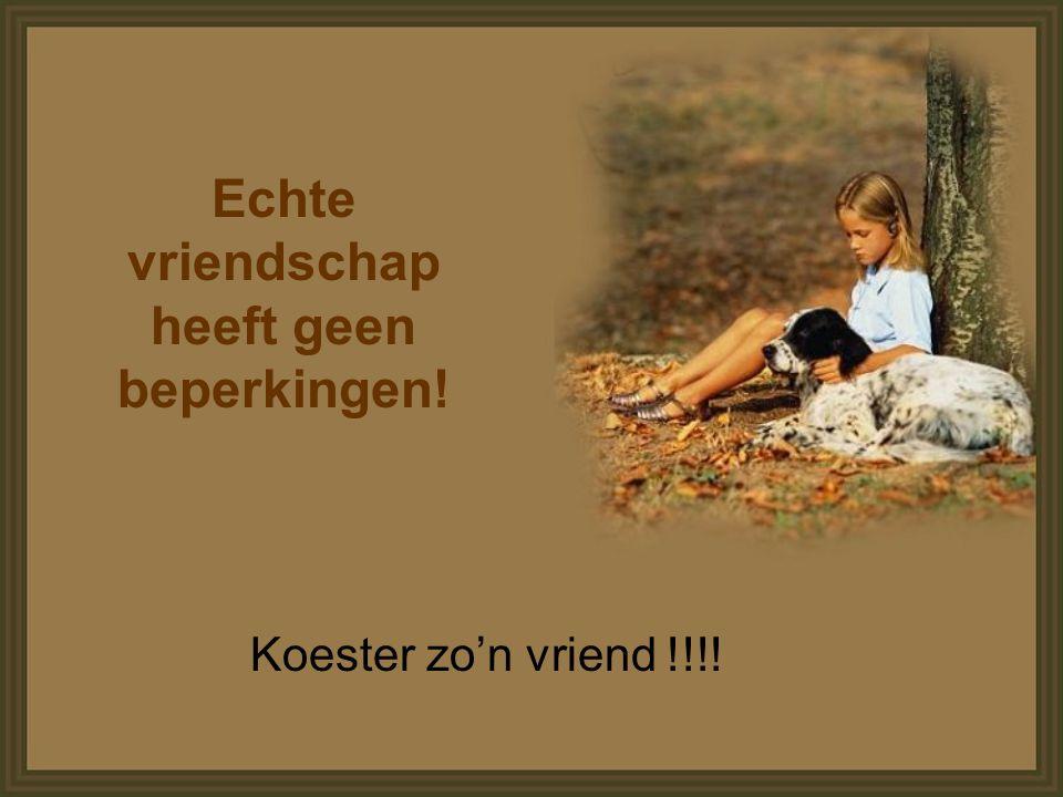 Echte vriendschap heeft geen beperkingen!