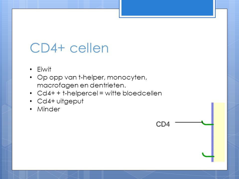CD4+ cellen Eiwit. Op opp van t-helper, monocyten, macrofagen en dentrieten. Cd4+ + t-helpercel = witte bloedcellen.