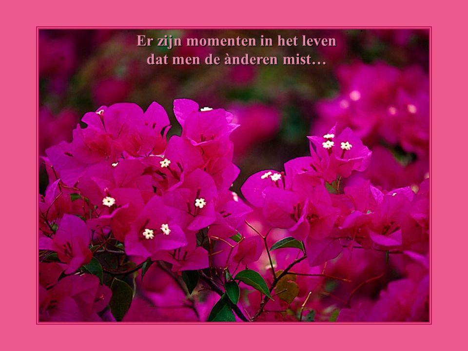 Er zijn momenten in het leven dat men de ànderen mist…
