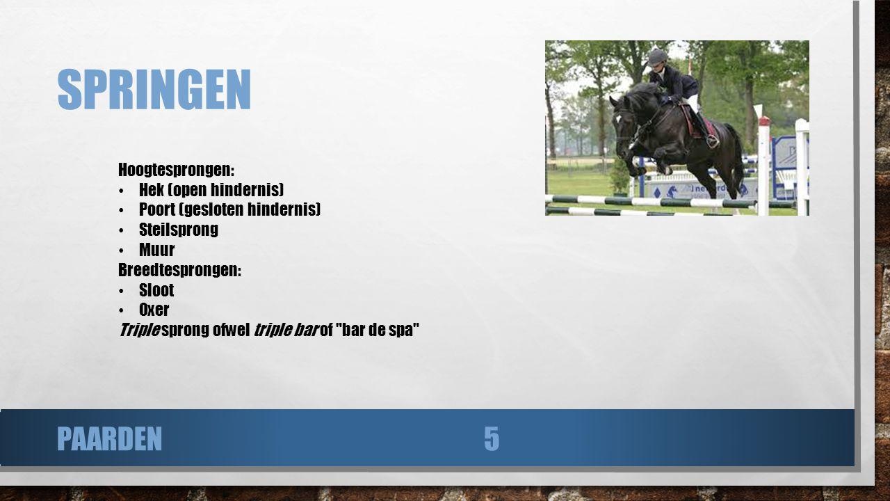 Springen paarden Hoogtesprongen: Hek (open hindernis)