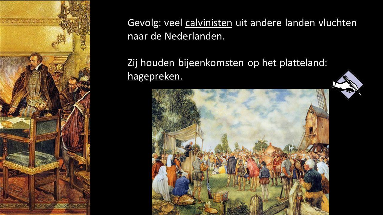 Gevolg: veel calvinisten uit andere landen vluchten naar de Nederlanden.