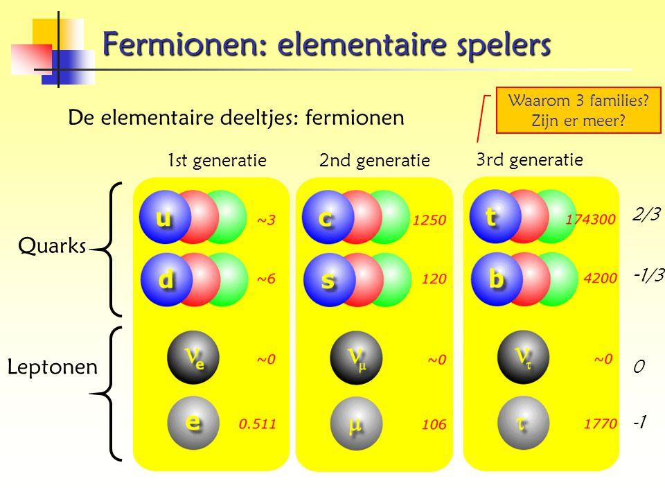 Fermionen: elementaire spelers