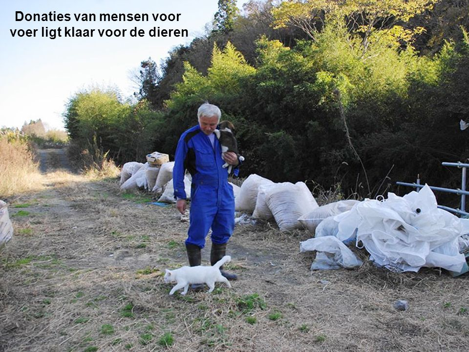 Donaties van mensen voor voer ligt klaar voor de dieren