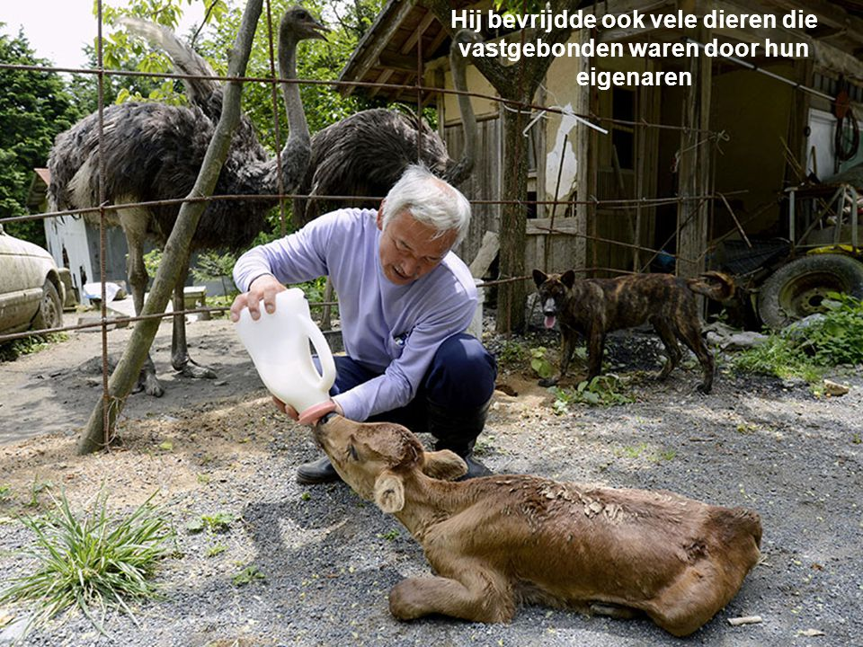 Hij bevrijdde ook vele dieren die
