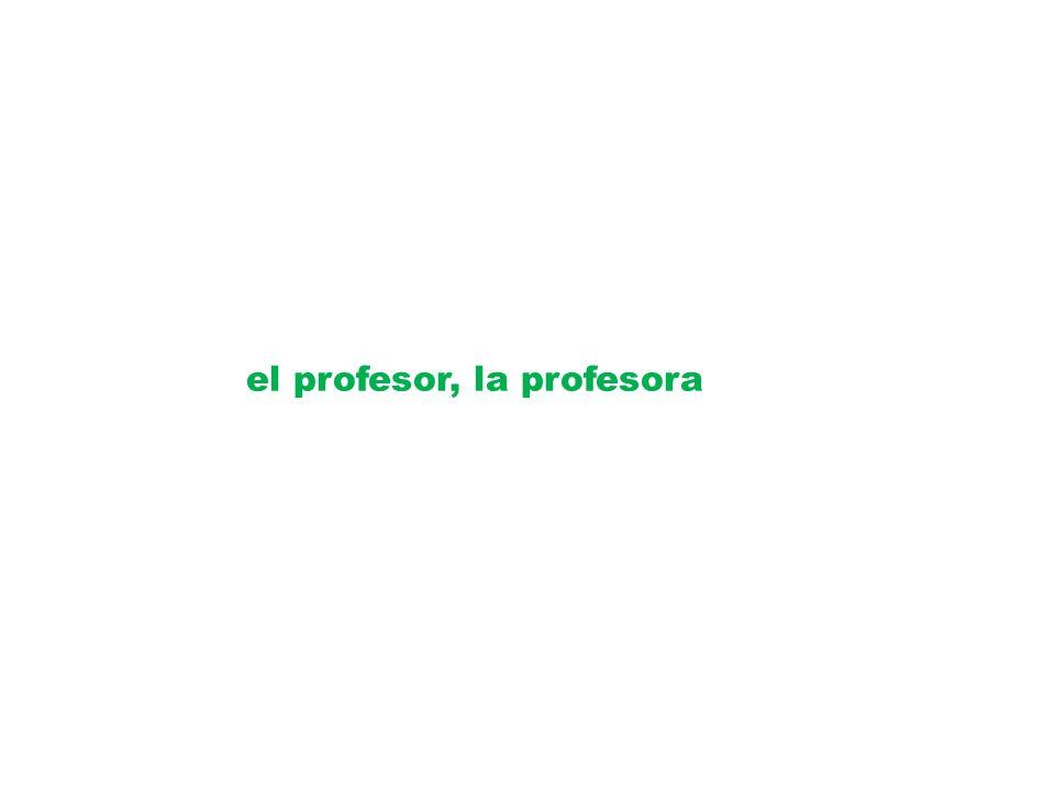 el profesor, la profesora
