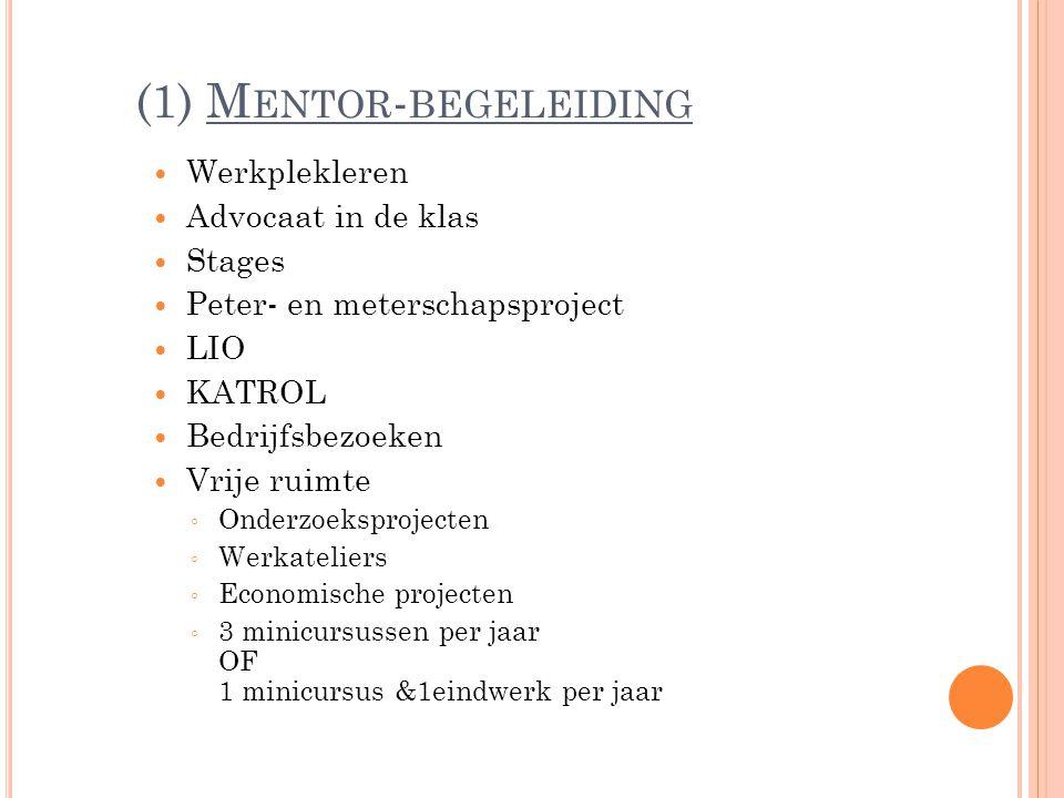 (1) Mentor-begeleiding