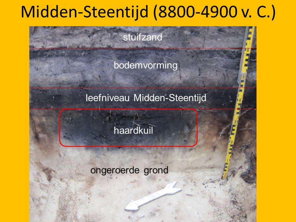 Midden-Steentijd (8800-4900 v. C.)