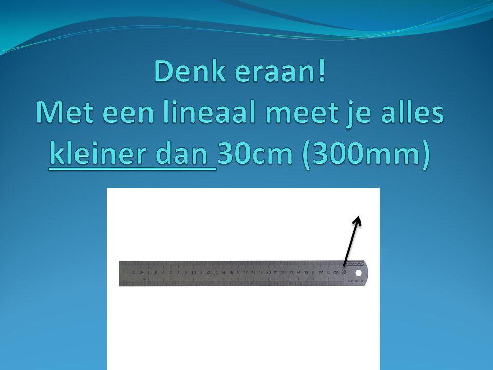Denk eraan! Met een lineaal meet je alles kleiner dan 30cm (300mm)