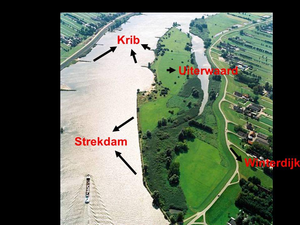 Krib Uiterwaard Strekdam Winterdijk