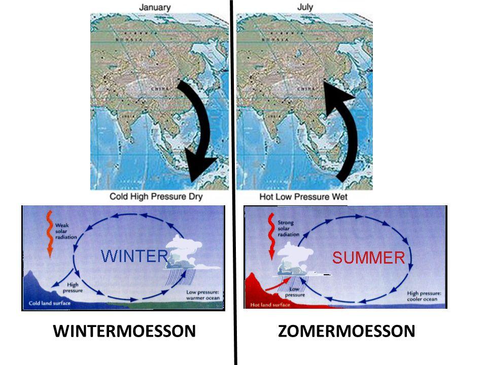WINTERMOESSON ZOMERMOESSON