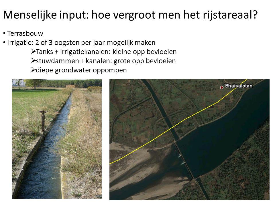 Menselijke input: hoe vergroot men het rijstareaal