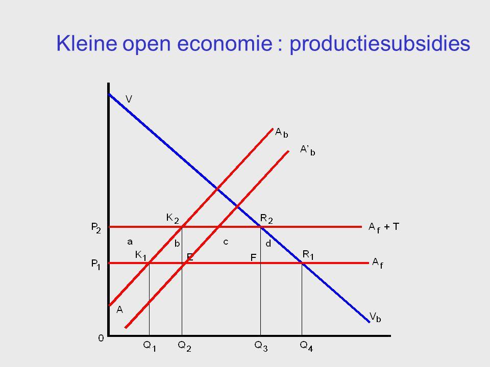 Kleine open economie : productiesubsidies