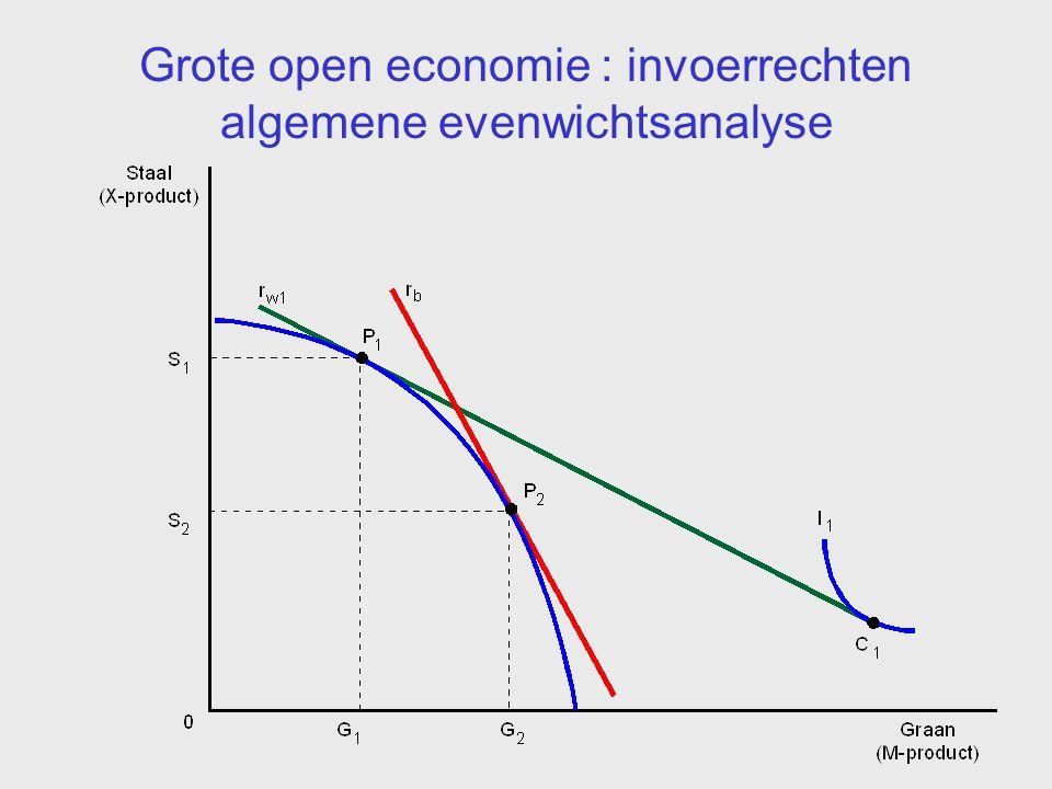 Grote open economie : invoerrechten algemene evenwichtsanalyse