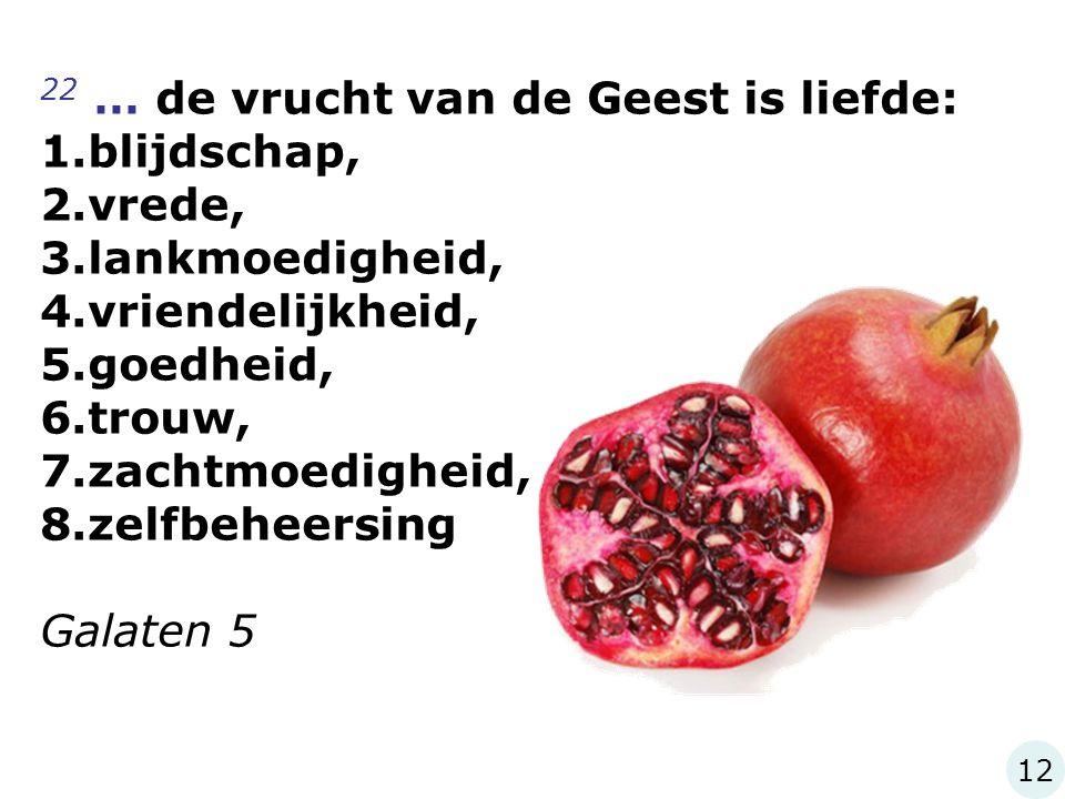 22 … de vrucht van de Geest is liefde: blijdschap, vrede,