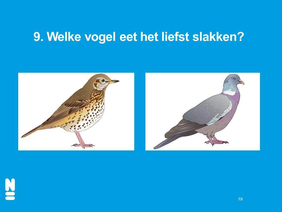 9. Welke vogel eet het liefst slakken